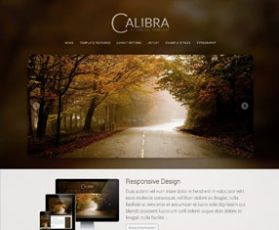 004 responsive-template