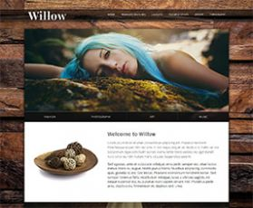 031 responsive-template